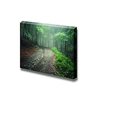 Canvas Prints Wall Art - Beautiful Scenery/Landscape Road Trough a Green Forest After Rain | Modern Wall Decor/Home Decoration Stretched Gallery Canvas Wrap Giclee Print & Ready to Hang - 12