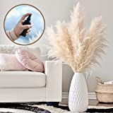 Spray Included Large 4Feet Pampas Grass Decor