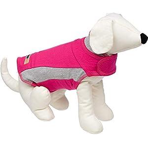 ThunderShirt Polo Dog Anxiety Jacket | Vet Recommended Calming Solution Vest for Fireworks, Thunder, Travel, & Separation 24
