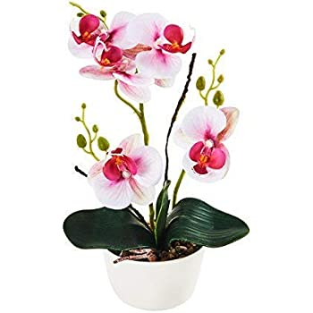 Imiee Silk Flowers with Pot 31cm in Height Artificial Orchid Phalaenopsis Arrangement Flower Bonsai with Vase for Room Table Centerpieces-H:12