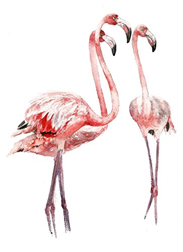 Flamingo art A030. Flamingo picture (8×10).Flamingo wall art. Flamingo painting.Flamingo nursery wall art.Nursery print.Flamingo poster.Flamingo artw…