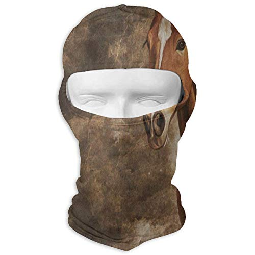 YIXKC Balaclava Vintage Horse Animal Art Hot Windproof Ski Mask for Men Skiing