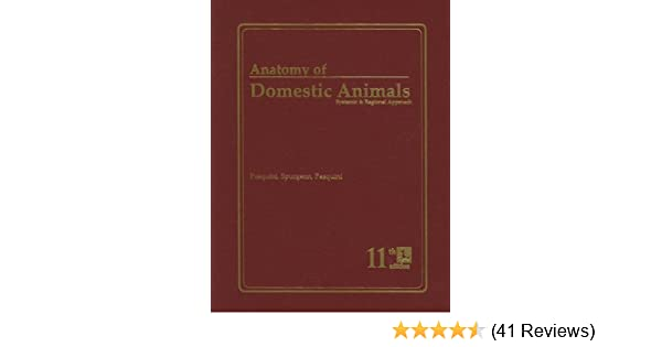 Anatomy of Domestic Animals: Systemic & Regional Approach ...