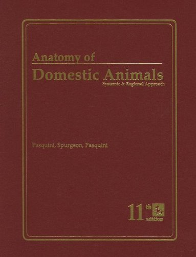 962311421 - Anatomy of Domestic Animals: Systemic & Regional Approach