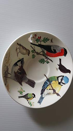 Garden birds jumbo replacement saucer ()