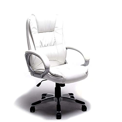 ALEKO ALC2216WH Executive PU Leather High Back Ergonomic Office Desk Chair Ergonomic Computer Home 20 x 27 Inch Back White