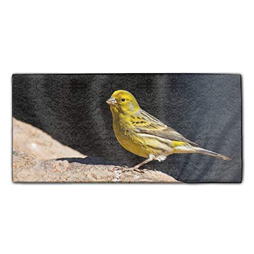 YSKHDBC Microfiber Kitchen Pool Towels Adults - Animal Canary ()