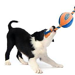 Nerf Dog (2-Pack) UltraPlush Trackshot Tuff Tug Dog Toy, Orange/Blue & Blue/Green, Medium