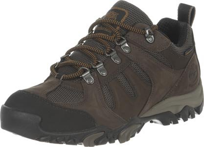 Multi Brown brown Boots WP 2 Hiking nbsp;Low Timberland AndS8qvaq