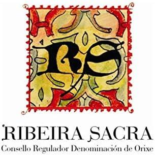 Vino Tinto Mencía Ribeira Sacra. Vino Gallego, Estuche Pack de 3 botellas VIÑADEZ 75cl cosecha 2019