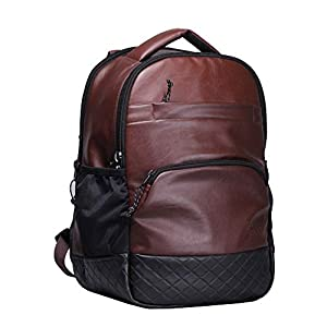 F Gear LuXur Synthetic Leather Brown 16.5″ Laptop Backpack (2404)