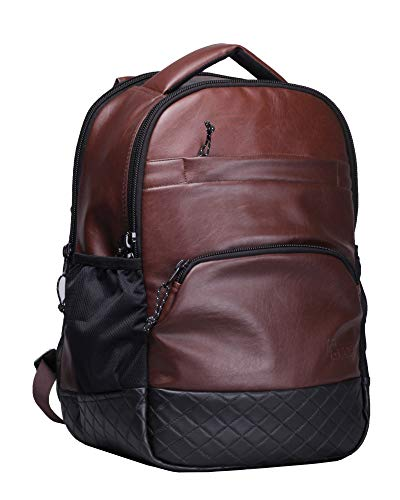 F Gear Luxur Brown 15 inch 23 Liter Laptop Backpack (2404)