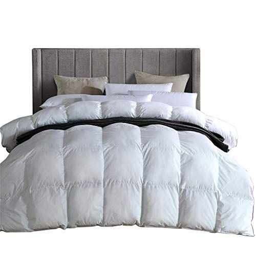 Super Insert - King Comforter Duvet Insert, Super Comfy All Season Goose Down and Feather Comforter with 100% Egyptian Cotton - Down Proof Cover, Hypoallergenic Quilted Comforter(White,106 x 90 inches)