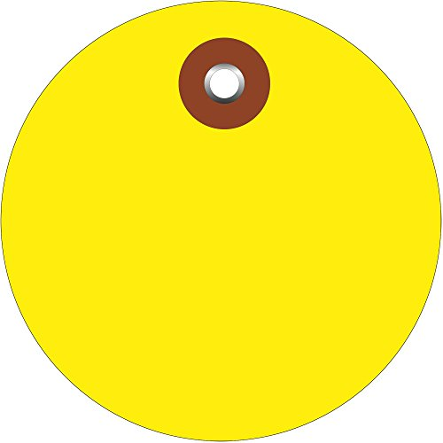 "BOX USA BG26073 Plastic Circle Tags, 3"", Yellow (Pack of ..."