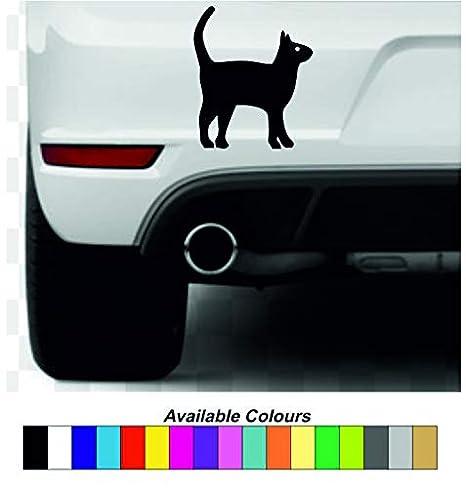 Adhesivo de vinilo de gato/de vinilo, varios colores disponibles: Amazon.es: Hogar