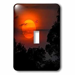 3dRose Danita Delimont - Sunsets - Brazil  A colorful orange