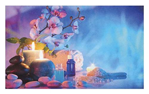Lunarable Spa Doormat, Preparation for Bath Massage in Garden with Stones Flowers Essential Oils Aromatherapy, Decorative Polyester Floor Mat with Non-Skid Backing, 30 W X 18 L inches, Pink Blue by Lunarable (Image #1)