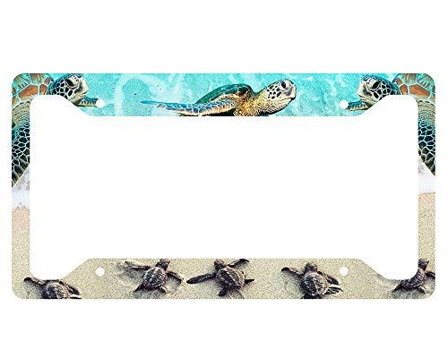 (Sea Turtle License Plate Frame)