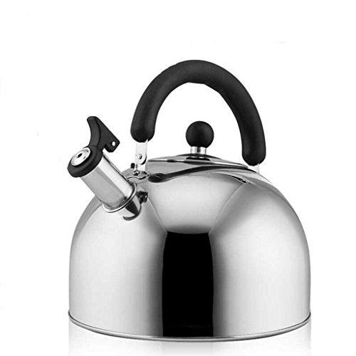 Bouilloire GAODUZI gaz INOX Coup de sifflet épaississement Cuisinière à gaz Domestique Universelle 4L5L6L (Capacité : 4L)