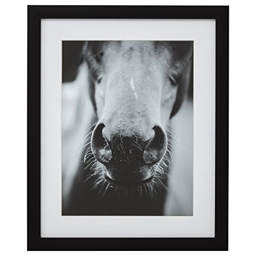 Modern Black and White Horse Nose Photo Framed Wall Art Décor - 18