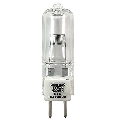 Philips 204925 - FLW 300 W 24 V proyector bombilla: Amazon ...