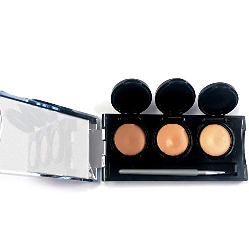 Full Coverage Concealer Cream by Dermaflage, 3 in 1 Pro Concealer Palette, Waterproof Face & Body Concealer, Blendable Formula for Perfect Match. 3 Colors + Concealer Brush, 6.9g/.24oz (Tan) (Best Concealer For Body Scars)