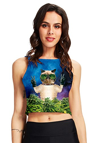 Cat Shirt Top - RAISEVERN Women's 3d Printed Crop Top Summer Casual Tank Tops(Weed Cat)  One Size