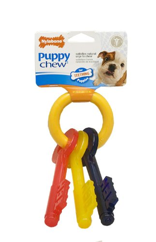 Nylabone Puppy Teething Keys Chew Toy, Small, My Pet Supplies