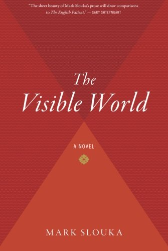 The Visible World: A Novel