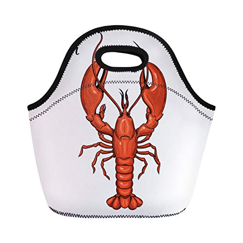Semtomn Neoprene Lunch Tote Bag Oyster Lobster Seafood Vintage Shrimp Animal Collection Cooking Crab Reusable Cooler Bags Insulated Thermal Picnic Handbag for Travel,School,Outdoors,Work