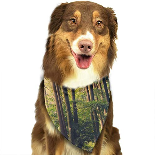 (Pet Scarf Dog Bandana Bibs Triangle Head Scarfs Beautiful Virgin Forest Accessories for Cats Baby)