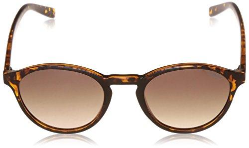 para hombre Polar PLD S sol de Polaroid Marrón Redondas Brown 1013 Gafas Ds Havana qgU0gB8w