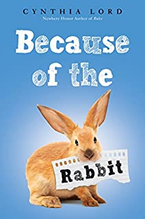 Book Cover: Because of the Rabbit
