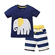 Little Boys' Baby Toddler Kids Cotton Summer T-shirt Shorts Set(18M,Navy)