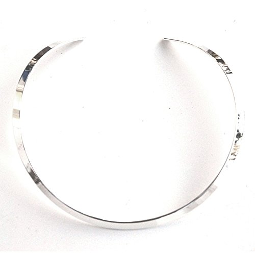 Best Silver Tone Adjustable 1/4 Wide Flat Collar Choker Necklace for Slides or Pendants