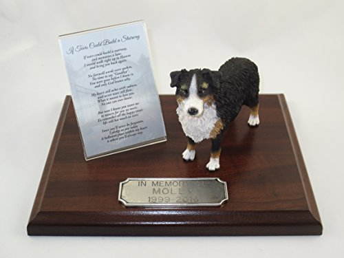 Beautiful Walnut Finished Personalized Memorial Plaque With Tricolor Docked Australian Shepherd (Australian Shepherd Figurine)