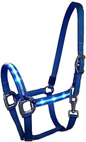 Reinecke Equestrian Dreamlight - Cabestro de seguridad para establo (nailon, LED), color azul