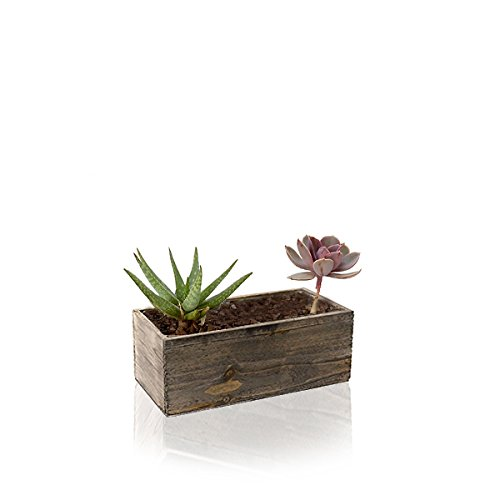 CYS EXCEL Wood Planter, Wood Rectangle Window Box Wood Planters with Removable Plastic Liner (2P)