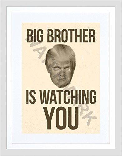 Donald Trump Big Brother Is Watching You 12x16'' Framed Art Print F12x12107