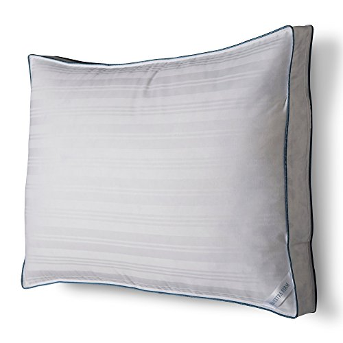 Price comparison product image Fieldcrest Luxury Down Surround Firm/Extra Firm Pillow, White, King