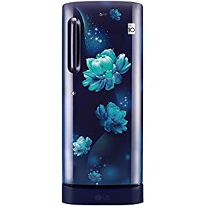 LG 235 L 4 Star Inverter Direct-Cool Single Door Refrigerator (GL-D241ABCY, Blue Charm, Base Stand with Drawer)