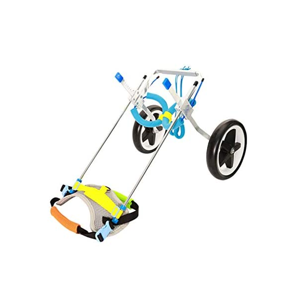 2 Wheel Dog Wheelchair Scooter Disabled Auxiliary Hind Limb Exercise Car Pet Adjustable Rehabilitation Wheelchair (Size… Click on image for further info. 7