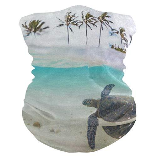 Tropical Hawaiian Green Sea Turtle Palm TreeHeadband Womens Bandana Mens Balaclava,Neck Warmer,Face Mask,Sweatband Hatliner