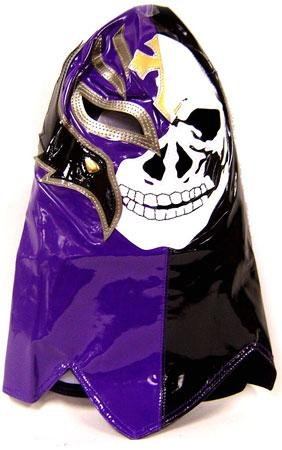 Wwe Rey Mysterio Child Costumes (Official Rey Mysterio Kids YOUTH Replica Over the Head Mask Skull Design)