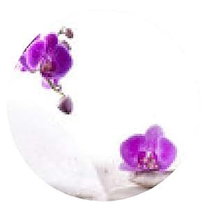 alfombrilla de ratón spa - ronda - 20cm