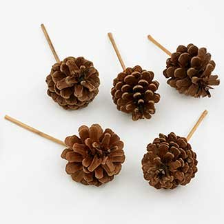 2.5Inch-3.5Inch Picked Pine Cones for Christmas and Holiday Decorating ,Carton of 100 by Floral Supply Syndicate
