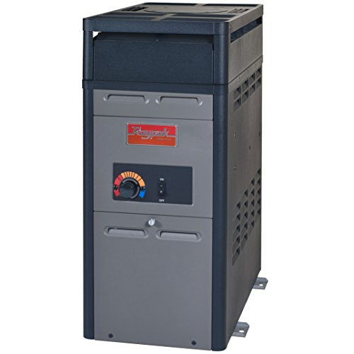 Raypak 105,000 BTU Swimming Pool and Spa Heater - Natural Gas