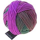 Gradient 100g von Schoppel Farbe 2249 Teezeremonie Wolle
