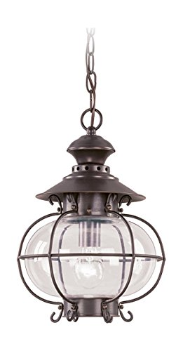 - Bronze 1 Light 100W Outdoor Pendant with Medium Bulb Base and Hand Blown Clear Glass from Harbor Series