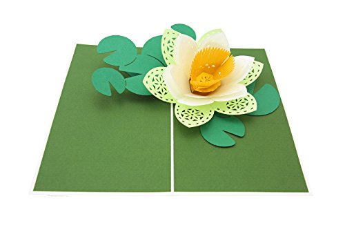 PopLife Lotus Blossom Pop Up Card, 3D Cards for All Occasions - Japanese Decoration